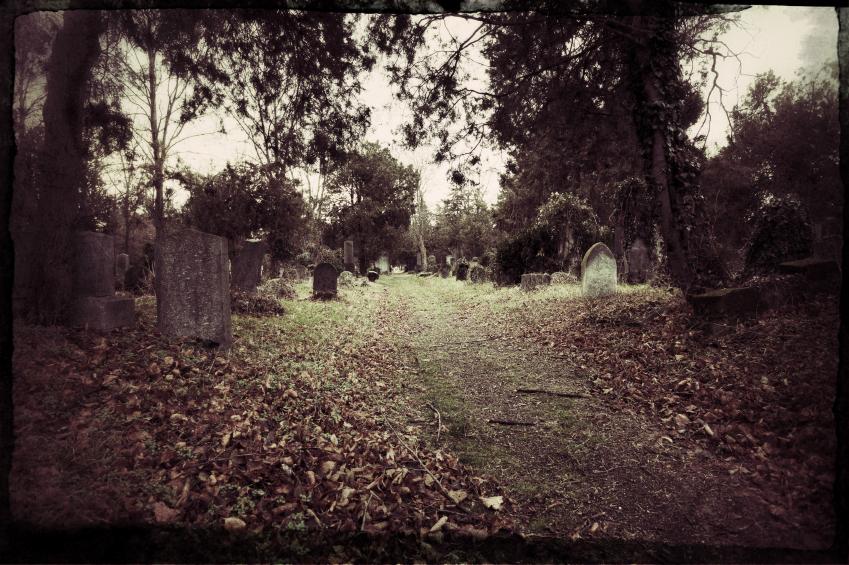 Zenralfriedhof-Wien
