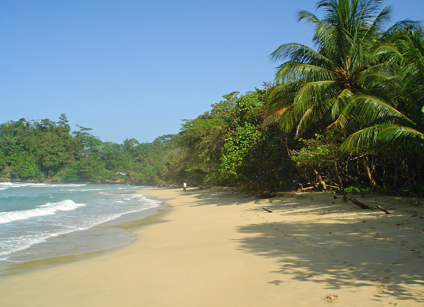 Panama-Bastimentos
