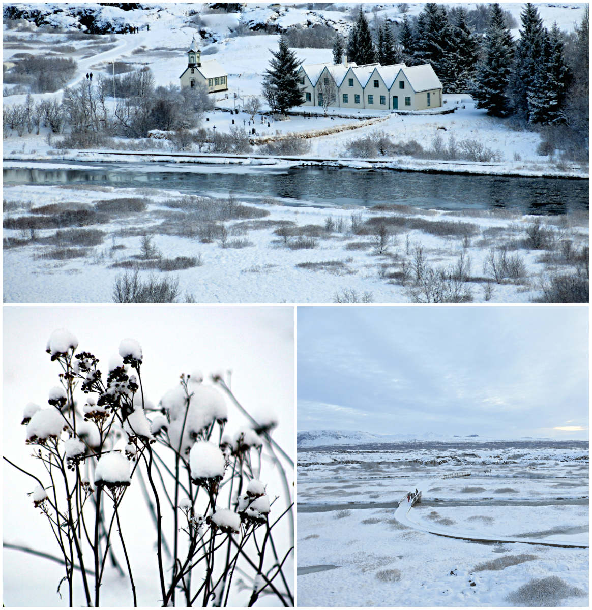 Thingvellir-Island