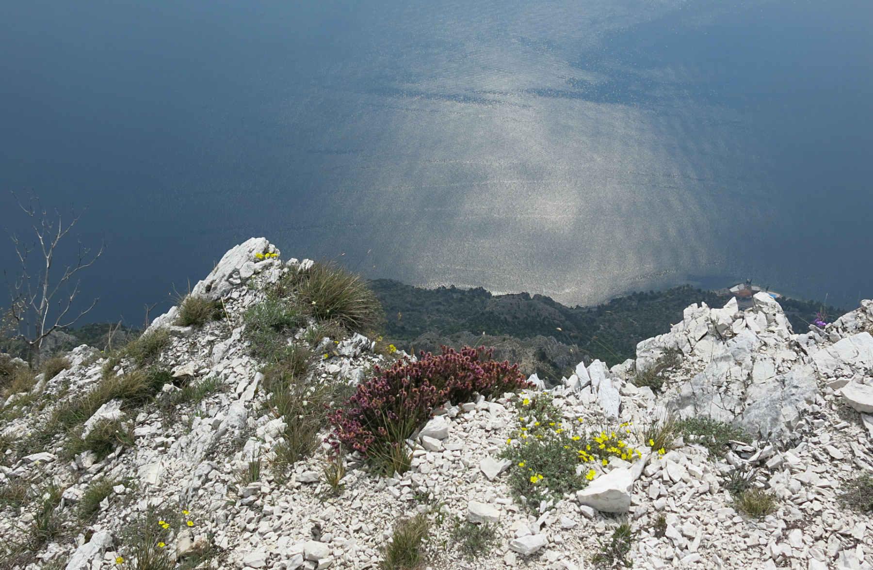 Gardasee-Ausblick-Bocca-Larici