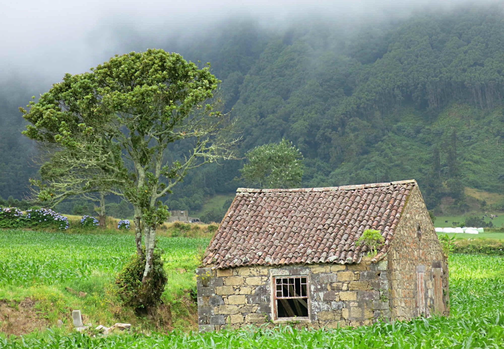Azoren_Portugal_Sao-Miguel-Sete-Ciades