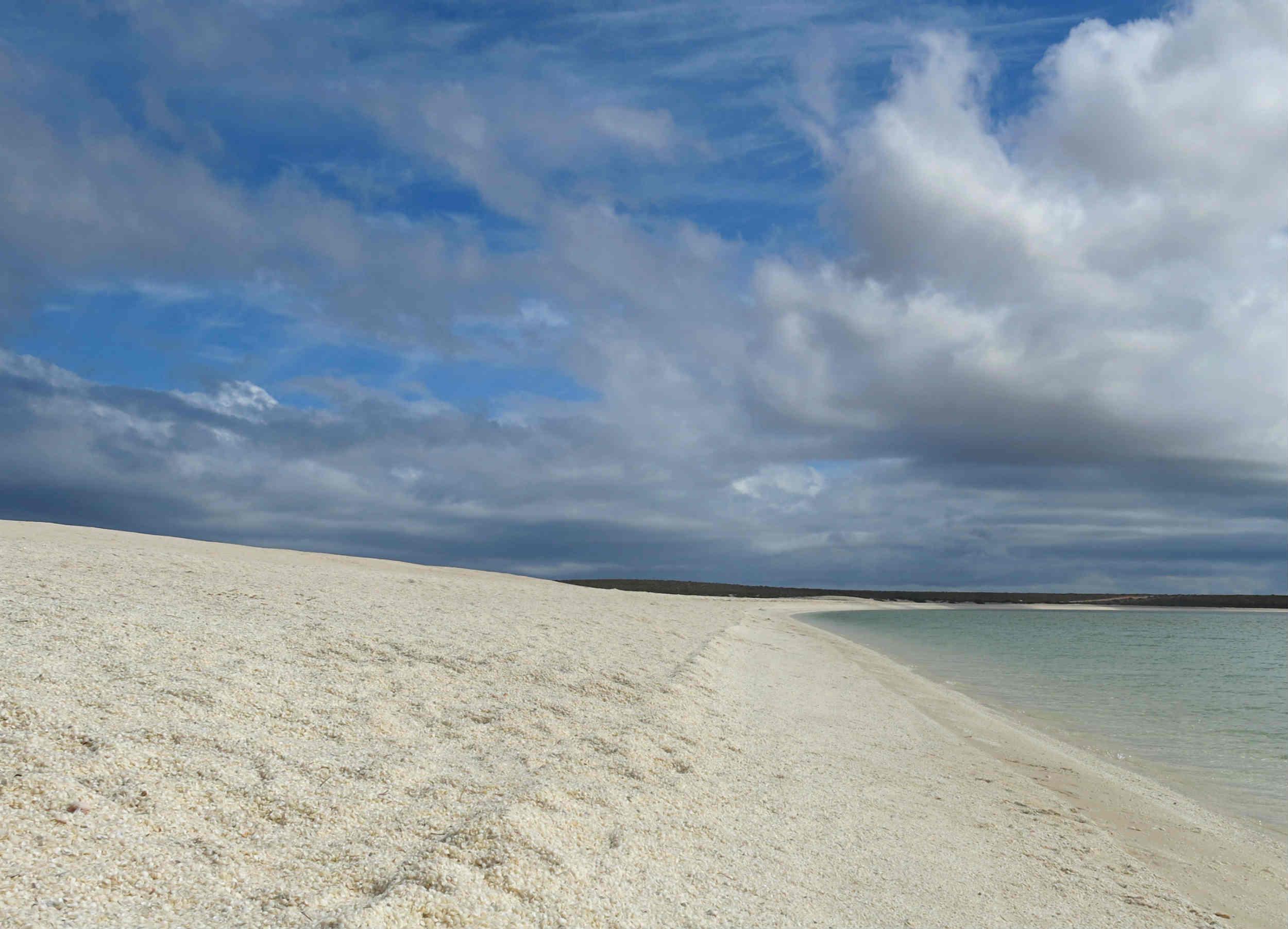 Australien_Westküste-Shell-Beach