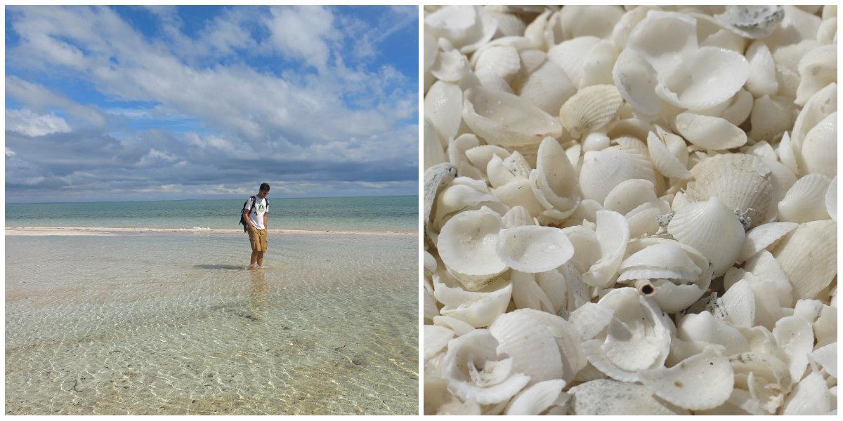 Westaustralien-Küste-Shark-Bay-Shell-beach