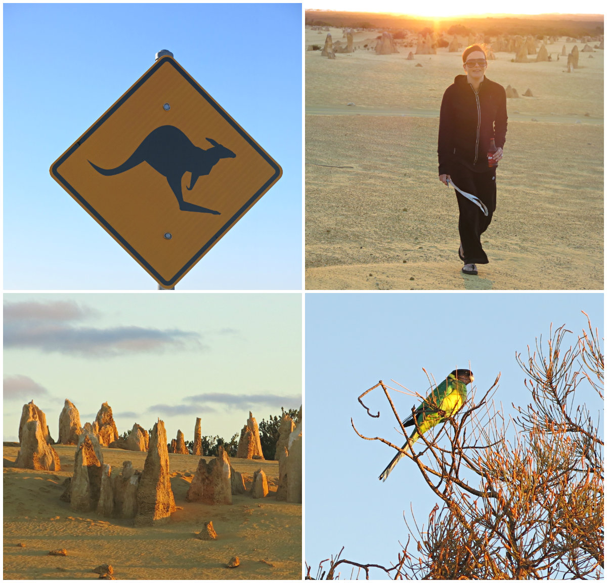 Western-Australia-Kollage