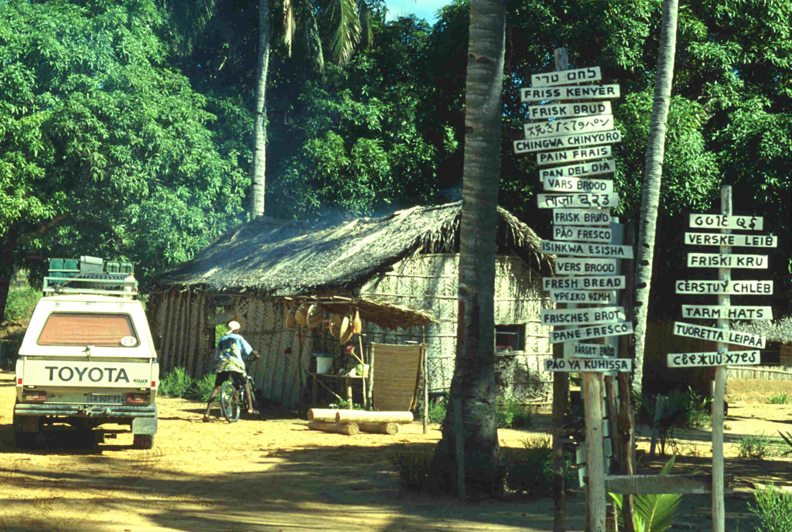 Safari-des Lebens-Mozambique