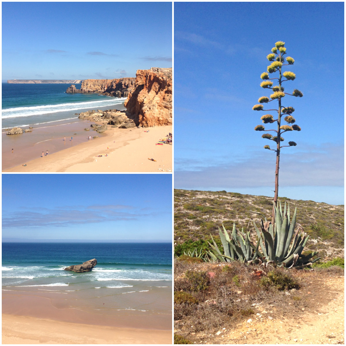 Portugal-Roadtrip-Sagres-Kollage