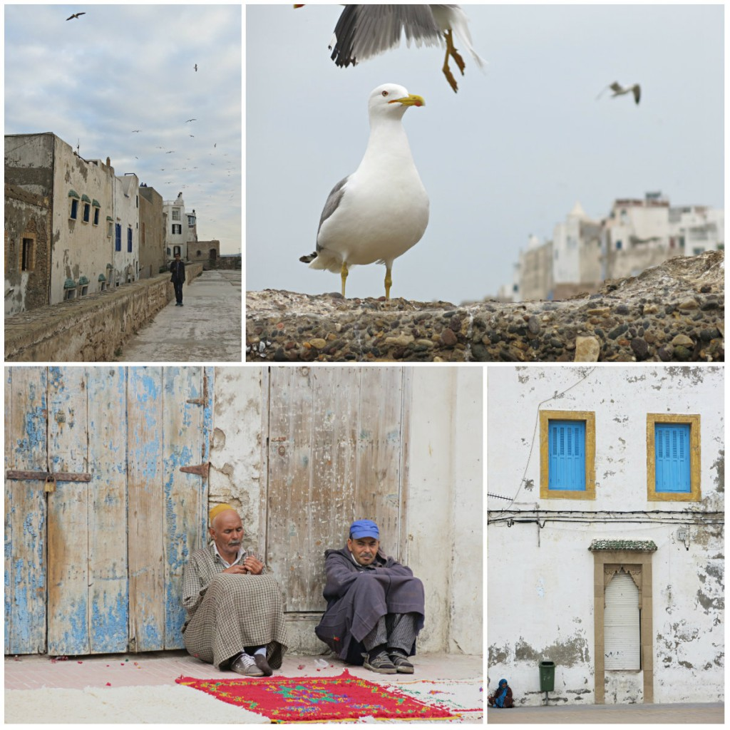 Marokko-Roadtrip-Essaouira-Kollage