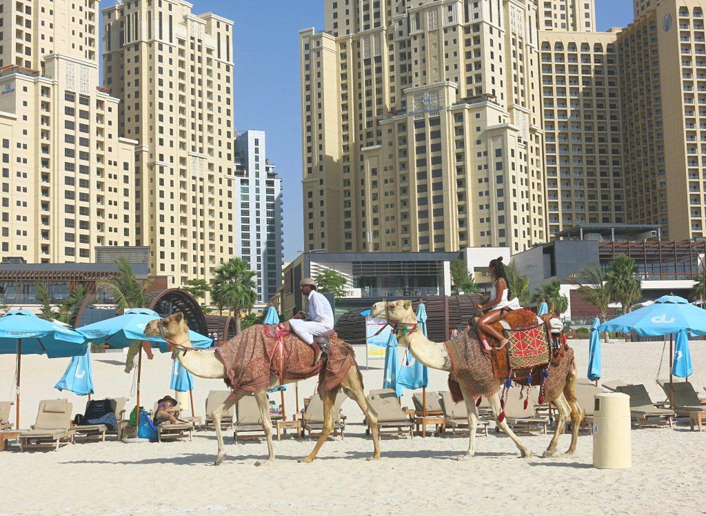 Dubai-mit-Kind-Strand-Kamele