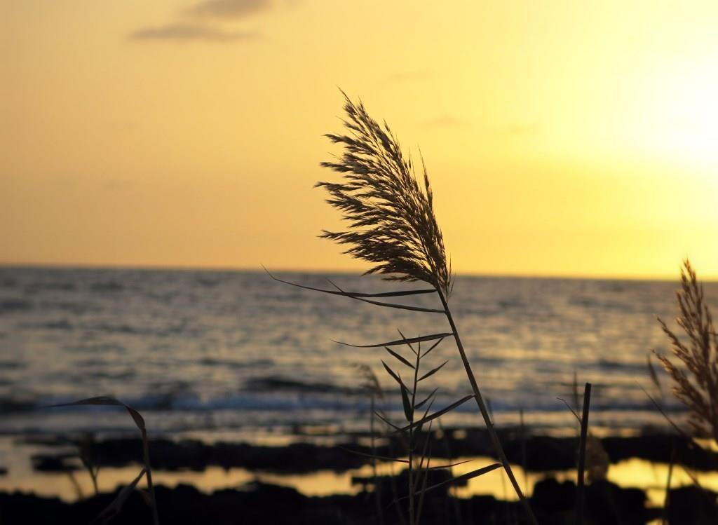zypern-2016-paphos-beach-sonnenuntergang