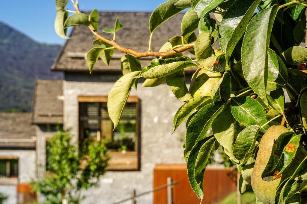 Ferienhaus-Barmberg-Wildkogel-Auf-da-Leitn-8-Obstgarten