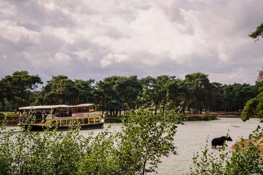 Safaripark Beekse Bergen Schiff-Safari
